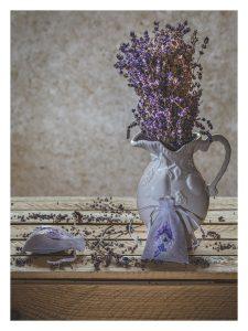 Lavender In A Jug