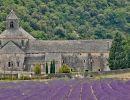 Abbaye de Senanque_web